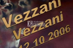 vezzani-bronzines-raides-7